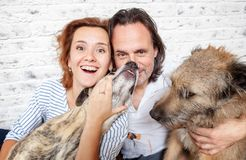 A happy married couple with their dogs, a seed portrait, love, c. Are, friendship, devotion Stock Images