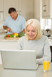 Happy mature blonde using laptop Royalty Free Stock Photo