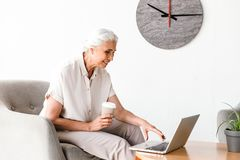 Happy mature business woman working on laptop stock photo