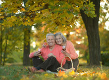 Happy mature couple having picnic Royalty Free Stock Photography