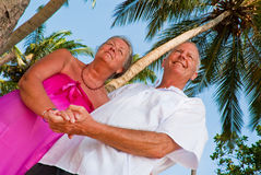 Happy mature couple holding hands. Happy mature couple smiling, holding hands in the shade of palm trees on the beach. They are looking out of the picture, and Royalty Free Stock Photo