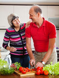 Happy mature couple  in home kitchen Stock Images
