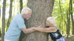 Happy mature couple hugging the thick tree touching each other`s hands. Senior man and woman relaxing together. Leisure stock video