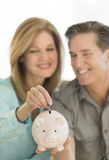 Happy Mature Couple With Piggybank At Home Royalty Free Stock Photography