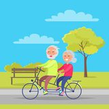 Happy Mature Couple Riding Together on Bike. On background of bench and green tree in city park vector illustration. Husband and wife on retirement Stock Photography