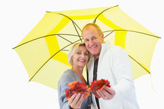 Happy mature couple showing autumn leaves under umbrella Royalty Free Stock Photography