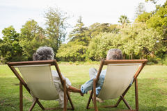 Happy mature couple sitting in park Royalty Free Stock Photo