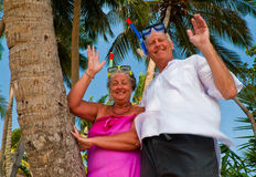 Happy mature couple with snorkeling gear waving. Happy mature couple smiling and waving in the shade of palm trees on the beach. They are wearing snorkeling gear Royalty Free Stock Photo