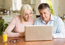 Happy mature couple using laptop Stock Image