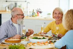 Happy mature friends having dinner together royalty free stock images