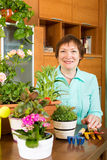 Happy mature gardener with flowerpots Royalty Free Stock Photos