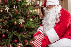 Cheerful Father Frost laying gift under fir-tree Royalty Free Stock Photo