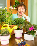 Happy mature woman caring for plants. In pots in home stock images