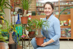 Happy mature woman with Nolina plant Stock Images