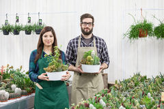 Happy men and female florist Royalty Free Stock Photos