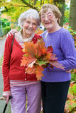 Happy Middle Age Women Holding Autumn Leaves. Royalty Free Stock Photos