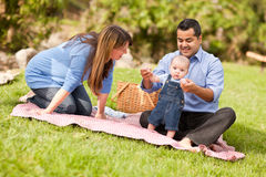 Happy Mixed Race Family Playing In The Park Stock Photos
