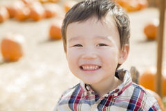 Happy Mixed Race Young Boy at the Pumpkin Patch Royalty Free Stock Image