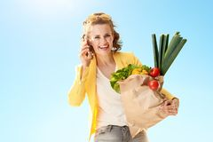 Happy woman with paper bag with groceries talking on smartphone Royalty Free Stock Photos