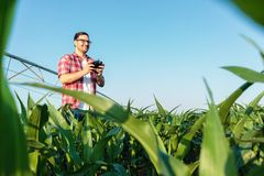 Happy modern young farmer inspecting his fields with a drone stock photography