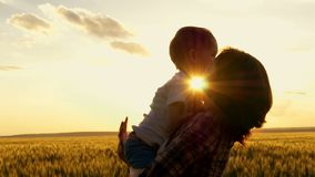 Happy Mom holds the child in his arms at sunset against the background of the wheat field. Happy family at sunset stock video footage
