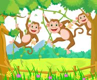 Happy monkey cartoon playing in the forest Stock Images