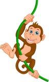 Happy monkey cartoon. Vector illustration of happy monkey cartoon Royalty Free Stock Photos