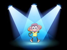 A happy monkey at the center of the stage Stock Photos