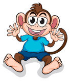 A happy monkey Royalty Free Stock Image