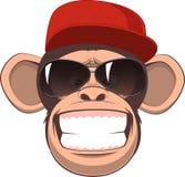 Happy monkey Royalty Free Stock Photo