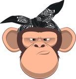 Happy monkey Royalty Free Stock Image