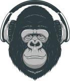 Happy monkey Stock Photography