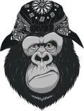 Happy monkey Stock Photo