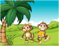 Happy monkeys at the hill with bananas. Illustration of the happy monkeys at the hill with bananas on a white background Stock Photography
