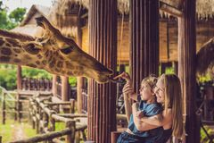 Free Happy Mother And Son Watching And Feeding Giraffe In Zoo. Happy Family Having Fun With Animals Safari Park On Warm Summer Day Stock Images - 108678884