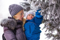 Happy mother and baby playing evergreen spruce in. Happy family enjoy snow and winter on holidays Stock Images