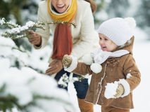 Happy mother and baby playing with snow on branch Stock Image