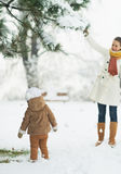 Happy mother and baby playing with snow on branch Stock Images