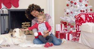 Happy mother and child with dog on Christmas Day stock footage