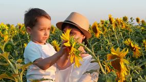 Happy mother and child are in the field of sunflowers in the sun. A little boy is looking at a bright yellow sunflower. Flower. Slow motion camera shooting stock video footage