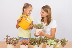 Happy mother and daughter looking at each other watering flowers Stock Photo