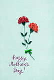 Happy mother day. Royalty Free Stock Photos