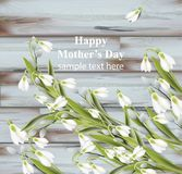 Happy Mother day greeting card. Snowdrops Spring card vector realistic illustration. wooden backgrounds. Happy Mother day greeting card. Snowdrops Spring card Stock Image
