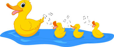 Happy Mother Duck Swimming With Duck Royalty Free Stock Photo