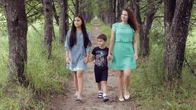 Happy mother with her daughter and son walking around the park smiling holding hands on a summer sunny day stock video