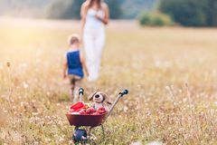 Happy mother and her son outdoors. In a field royalty free stock photo