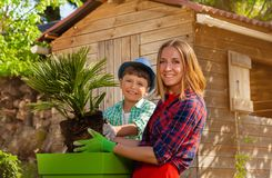 Mother and her son working together in the garden stock images