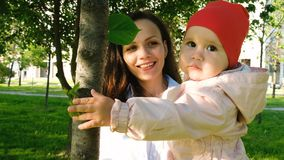 Happy mother holds a child in her arms in a city park. Baby is playing with a leaf on the tree at sunset. Happy mother holds a child in her arms in a city park Royalty Free Stock Image