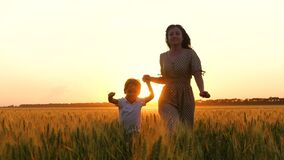 A happy mother holds her child's hand and runs across a wheat field at sunset. A mother and a little boy run through the