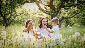Happy mother and kids playing with dandelions stock video